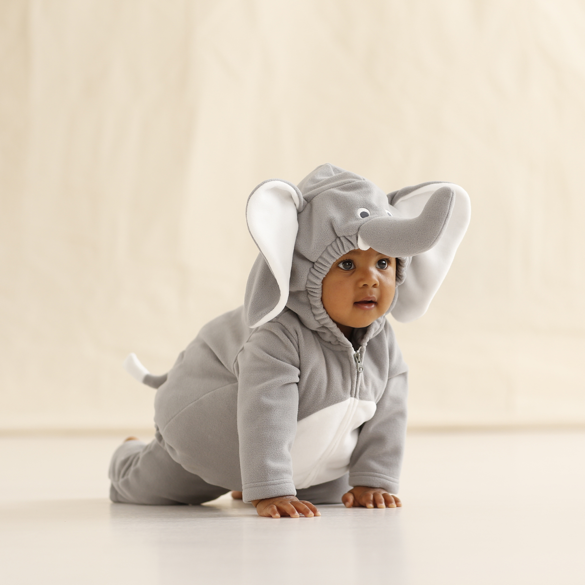 of elephants and divine mercy, or how i'm justifying my child's